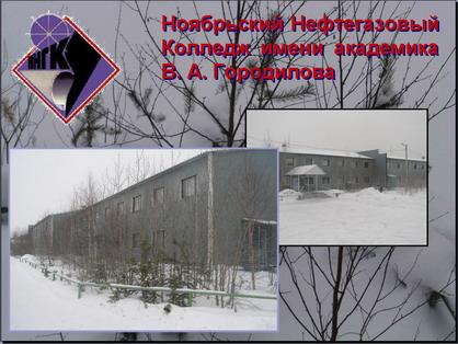 Ноябрьский нефтегазовый колледж имени академика В.А.Городилова